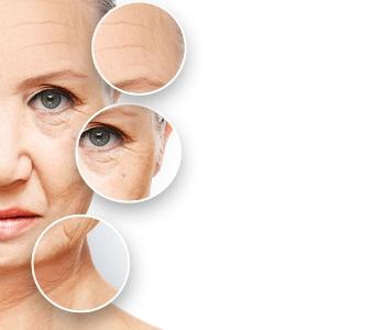 visia skin imaging system information